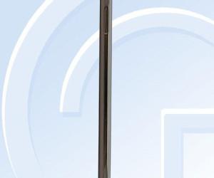 17023816-c