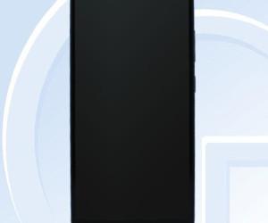 17024565-z