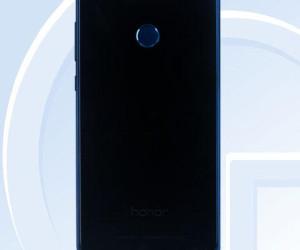 17025099-b